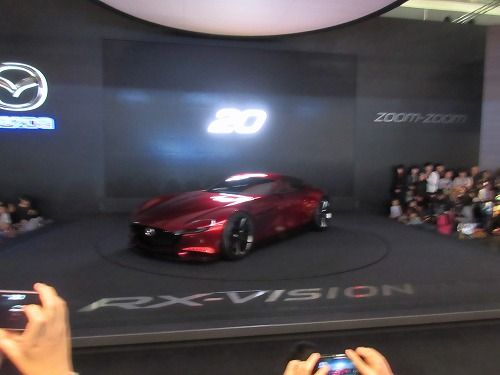 Tokyo Motor Show(195)