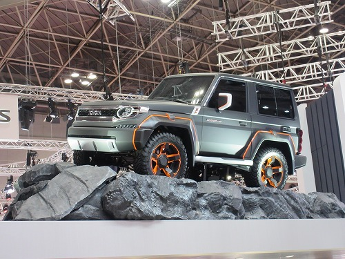 Tokyo Motor Show(41)